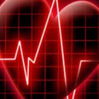 Сердце для жизни