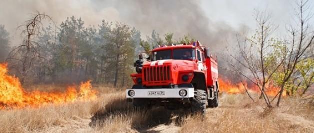 Из-за тёплой погоды в Прикамье начала гореть трава