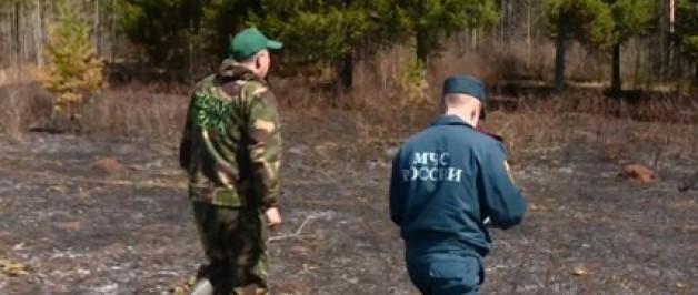 В крае объявлен 4-й уровень пожарной опасности